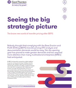 Seeing the big strategic picture - report cover